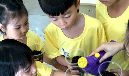 BUỔI NGOẠI KHÓA SCIENCE FOR KIDS: PLANT LIFE CYCLE